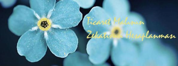 blue_flowers-cover-photo-20878